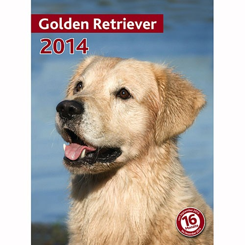 Kalender Golden Retriever 2014